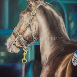 Lot 338 Inglis Yearling Sales 2013 Equine Art