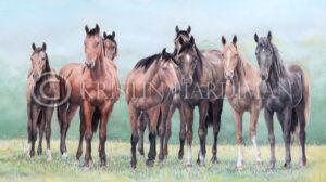 A Council of Horses