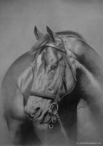 Vanquished – Pencil Portrait