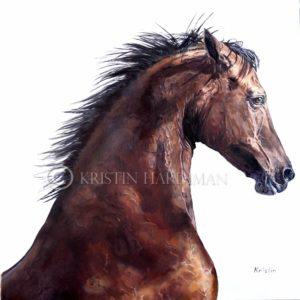 Louise's stallion.